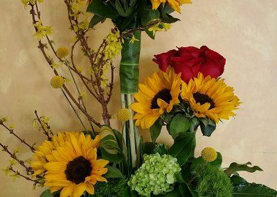 sandiegoflowers-013