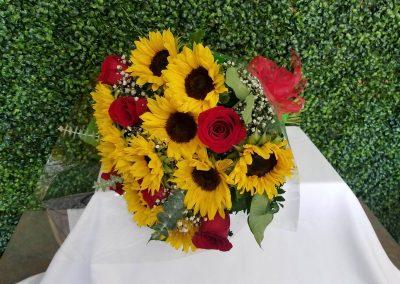 sandiegoflowers-048