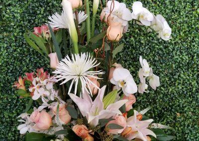 sandiegoflowers-054