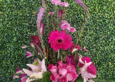 sandiegoflowers-055