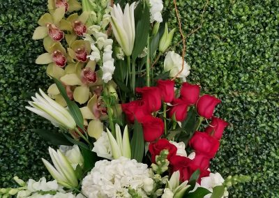 sandiegoflowers-069