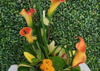 sandiegoflowers-075