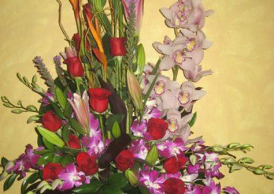 sandiegoflowers-19