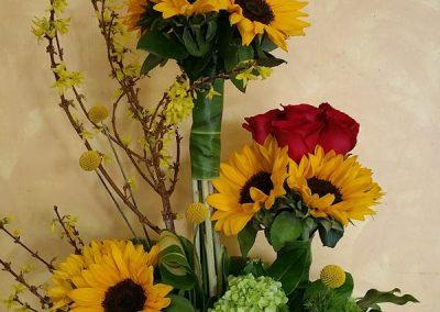 sandiegoflowers-23