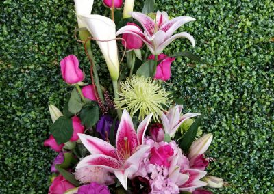 sandiegoflowers-44