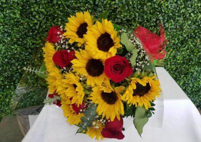 sandiegoflowers-53