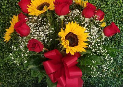 sandiegoflowers-88